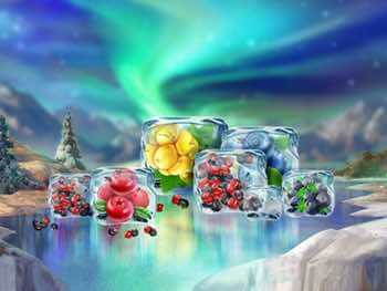 Winter Berries in ice